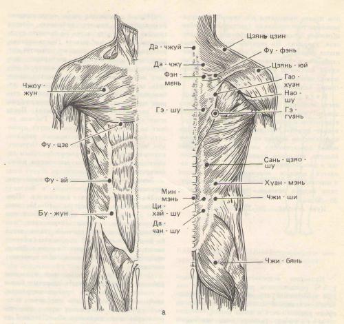 точечный массаж при ангине у ребенка
